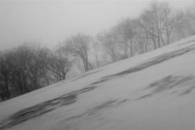 Hokkaido-6