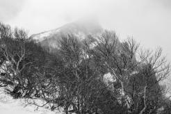 Hokkaido-7